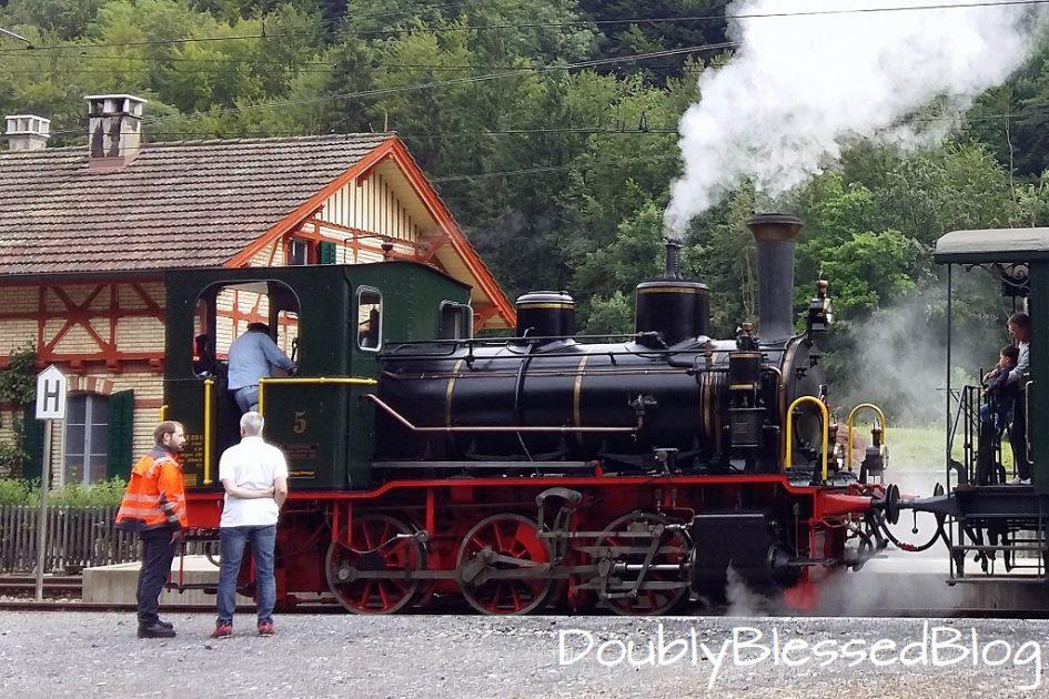 Dampflok Schnaaggi-Schaaggi im Sihlwald - Zürcher Mueseumsbahn