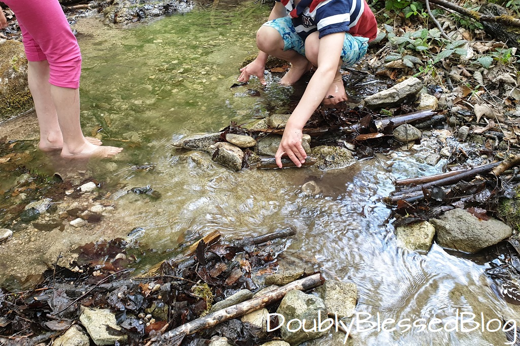 Waldpsiele für Kinder - Wasser stauen